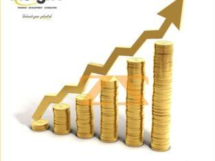 دورة تحليل الأوراق المالية