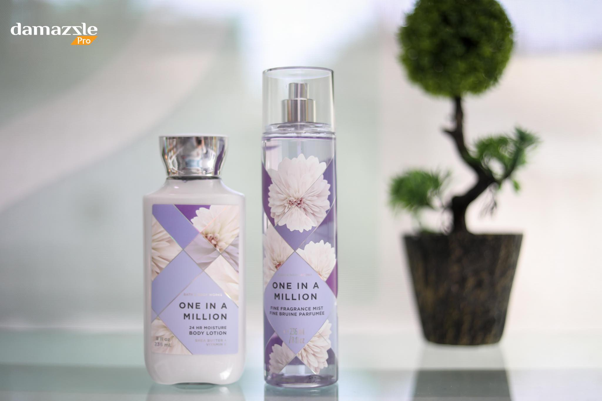bath and body work splash and lotion