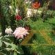 مزرعة للبيع في ريف دمشق حرستا