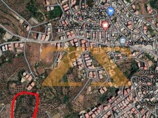 أرض زراعية على الشيوع ( الأسهم ) في دوير الشيخ الس