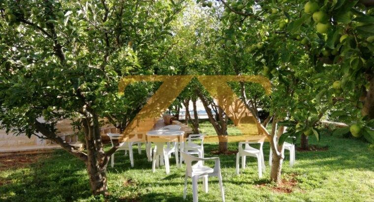 مزرعة للايجار في كروم مضايا